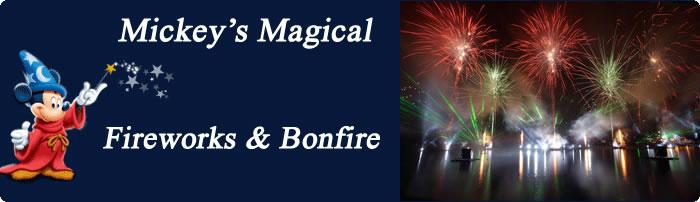 Bonfire night (1)