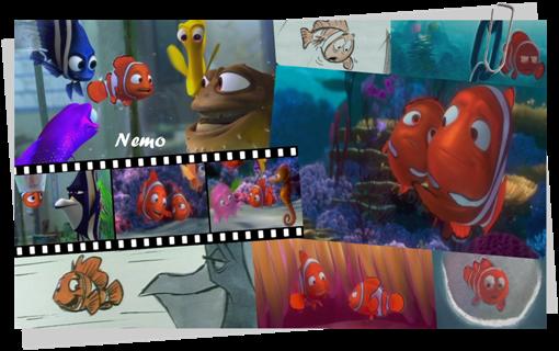 Zoom Nemo